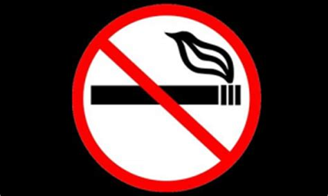 Thesis Statement Quitting Smoking Free Essays